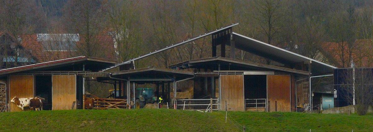 Markushof, Solawi, Rhein-Neckar, Solidarische Landwirtschaft,