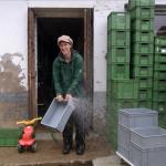 Hochwasser, saubermachen